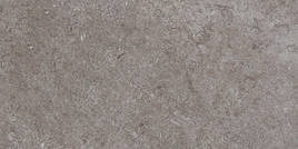 Villeroy & Boch Oregon grijs 30x60cm 2377 ST60 0